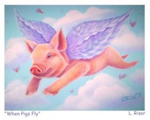 pigsflyy.jpg