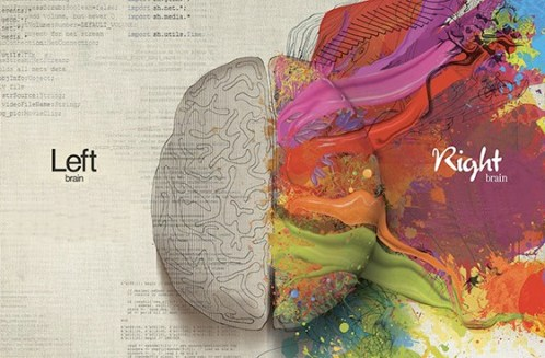 left-and-right-brain.jpg